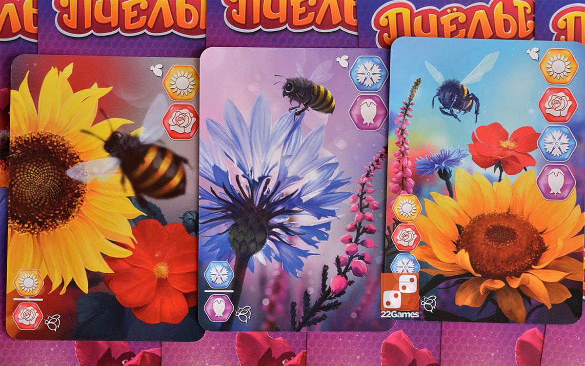 Пчёлы. Тайное королевство